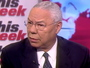 Powell: Tea Party Will Not Produce A Viable Presidential Candidate