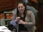 Illinois Dem Dismisses GOP Colleague As