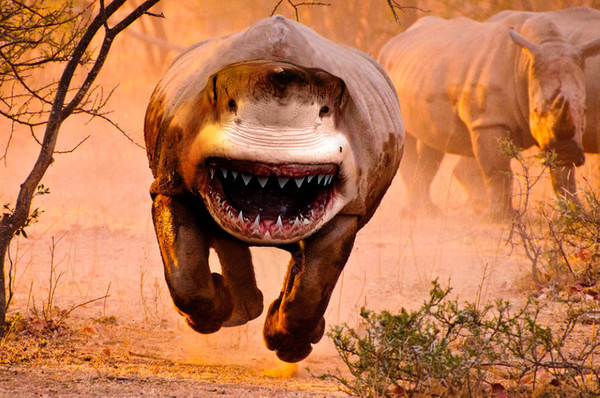 Scary Animals That Are Real 23 Terrifying H...