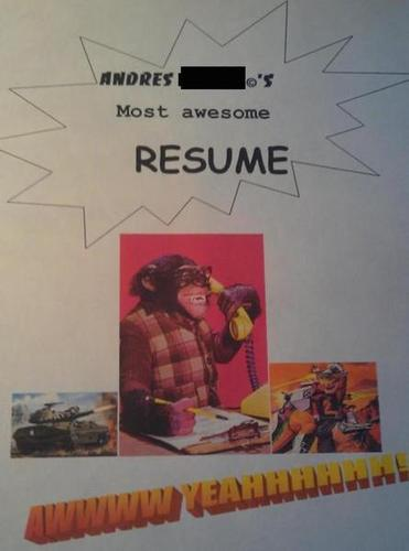 17 Hilariously Horrible Resumes For The  U0026 39 Do Not Hire U0026 39  Pile