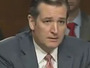 Ted Cruz Grills ICE Director About Thousands Of Criminal Illegal Aliens Released Without Charge